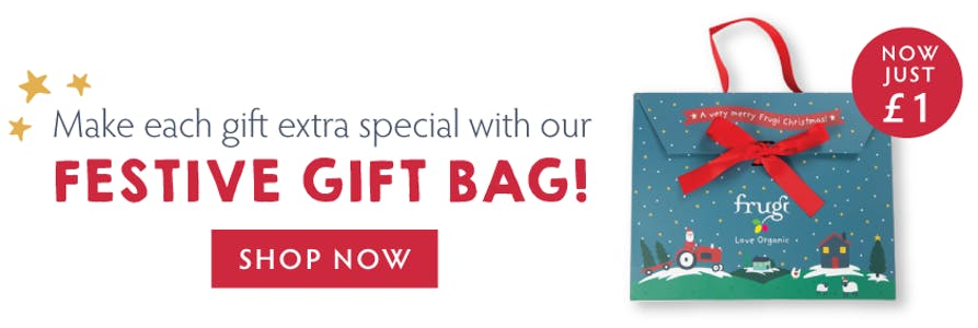 Make each gift extra special with our festive gift bag, now just £1! Shop now