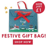Festive gift bag now just £1! Shop now