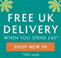 FREE UK Delivery when you order £60 from our New Collection!