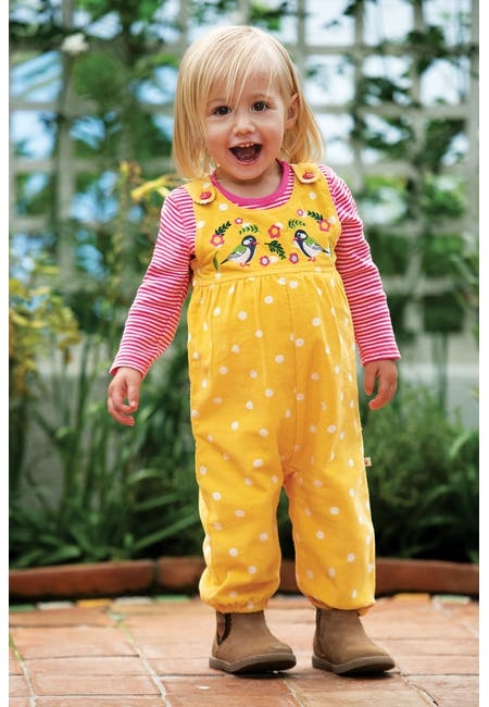 Willow Embroidered Dungaree